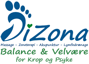 DiZona
